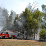 Israel Forest Fire 2010
