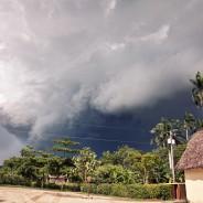 Typhoon Glenda