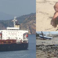 Eco-terrorism or negligence